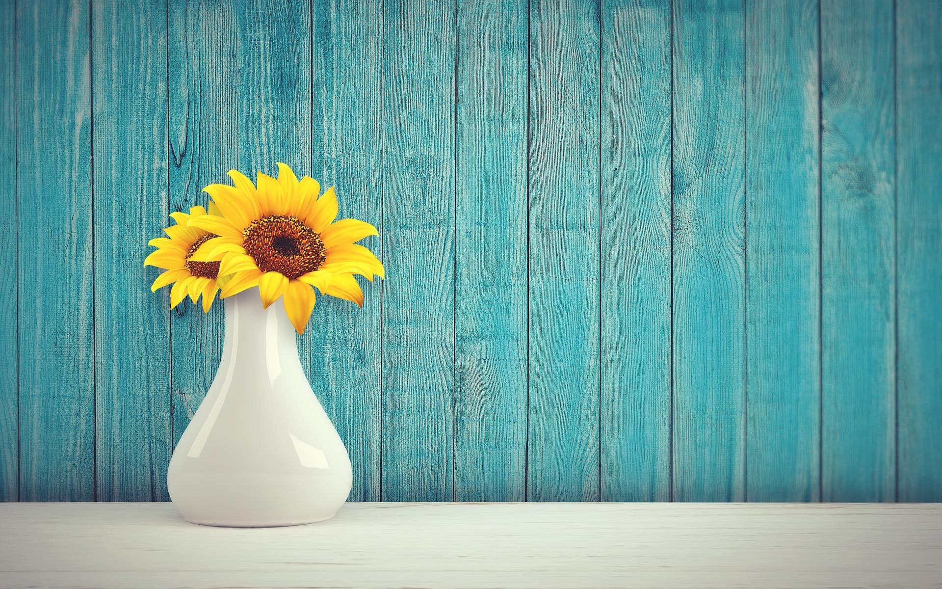 Auringonkukkia valkoisessa maljakossa.